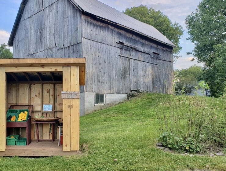 Snip Family Farm STALL
